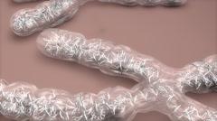 Artist rendering human chromosome. - stock footage