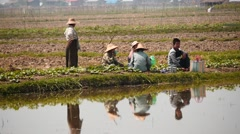Village people group eat and take rest in field in Myanmar Stock Footage