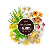 Medicinal Herbs Plants Wreath Flat Frame - stock illustration