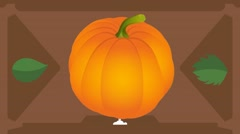 Pumpkin  - Vector Graphics - Food Animation - brown Stock Footage