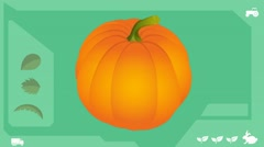 Pumpkin  - Vector Graphics - Food Animation - healthy Stock Footage