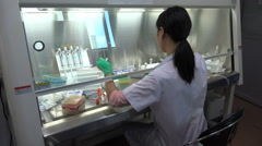 Chinese female researcher at work in a hospital laboratory in Shenzhen Stock Footage