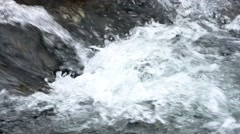 Mountain stream flowing impetuous. Stock Footage
