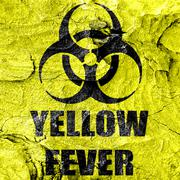 yellow fever concept background - stock illustration