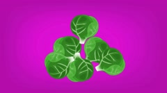 Brussels Sprouts  - Vector Graphics - Food Animation - hard pink - stock footage