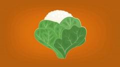 Cauliflower  - Vector Graphics - Food Animation - orange Stock Footage