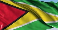 Ultra realistic looping flag: Guyana Stock Footage