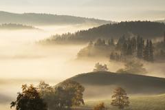 Morning fog Aidlinger Hoehe Riegsee municipality Pfaffenwinkel region Upper - stock photo