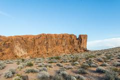 Stock Photo of Desert with sparse Vegetation Valley of Fire State Park Nevada USA North America