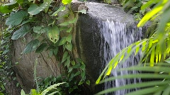 Garden scene with waterfall Stock Footage