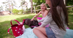 Little girls patting her pet dog in a park Stock Footage