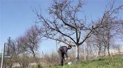 Spring gardening whitewash Stock Footage