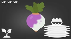 Turnip  - Vector Graphics - Food Animation - grey Stock Footage