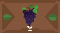 Grapes  - Vector Graphics - Food Animation - brown Stock Footage