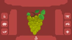 Green Grapes  - Vector Graphics - Food Animation - menu Stock Footage