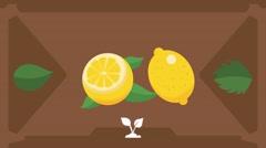 Lemon  - Vector Graphics - Food Animation - brown - stock footage
