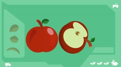 Red Apple  - Vector Graphics - Food Animation - healthy Stock Footage