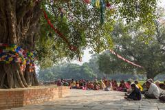 Pilgrims praying under Bodhi tree in Lumbini, Nepal Stock Photos