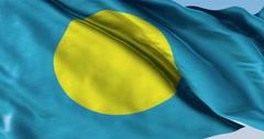 Ultra realistic looping flag: Palau Stock Footage