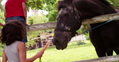 Little boys feeding horse a carrot on farm - stock footage
