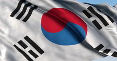 Ultra realistic looping flag: Korea South Stock Footage