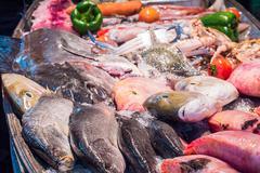 Fresh seafood on ice bucket in restuarant Stock Photos