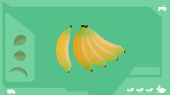 Bananas  - Vector Graphics - Food Animation - healthy Stock Footage