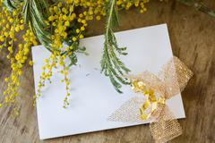 Mimosa and an empty  card with a gold bow - stock photo