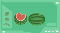 Watermelon  - Vector Graphics - Food Animation - healthy Stock Footage