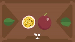 Passion fruit  - Vector Graphics - Food Animation - brown Stock Footage