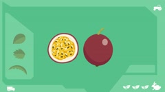 Passion fruit  - Vector Graphics - Food Animation - healthy Stock Footage