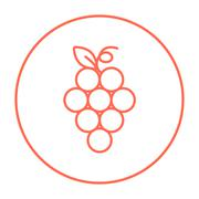 Bunch of grapes line icon - stock illustration