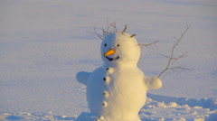 A snowman with the twiggy hair Stock Footage