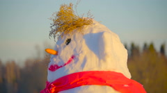 A snowman with big fat tummy Stock Footage