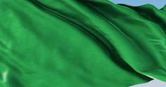 Ultra realistic looping flag: Libya - stock footage