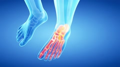 medical 3d animation of the highlighted skeletal foot - stock footage