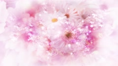 Wedding Video Background Loop 04 Flowers - stock footage