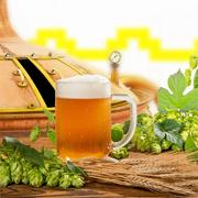 glass of beer with hops and barley in the brewery - stock photo