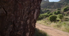 Jogger on a dirt path in nature with bright sunflare - stock footage