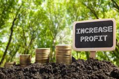 Increase Profit - Financial opportunity concept. Golden coins in soil Chalkboard - stock photo
