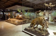 Moscow, Russia - February 24, 2016: tate Darwin Museum Stock Photos