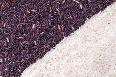 row of rice berry and jasmine rice grains - stock photo