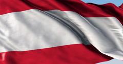 Ultra realistic looping flag: Tahiti - stock footage