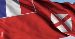 Ultra realistic looping flag: Wallis Futuna Local Stock Footage