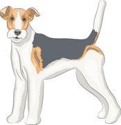 Vector. Fox terrier. - stock illustration