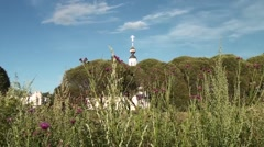 Thickets of Thistle and a view of the dome of the Church - stock footage