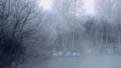 stock video footage Swan lake freezing fog - stock footage