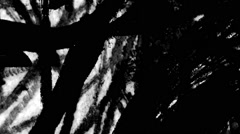 Scribble pencil grunge filmleader Stock Footage