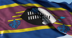 Ultra realistic looping flag: Swaziland Stock Footage