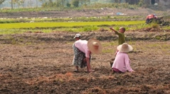 Village Family working on private gardens field - Myanmar Stock Footage